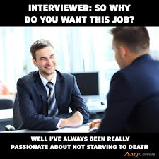 anzy careers linkedin anzy interview meme jpg