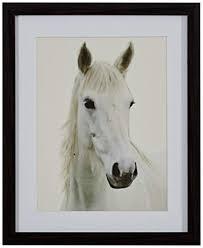 Modern Photo of White Horse, Brown Frame, 13