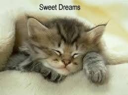 Όνειρα γλυκά..