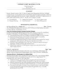 png diaster   Resume And Cover Letters Resume Examplesample Resume Summary Retail Assistant Buyer Resume     best example of a resume