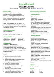 sales cv template sales cv account manager sales rep cv junior travel consultant resume