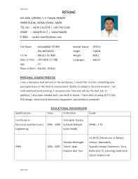 example of good resume format resume examples 2017 example