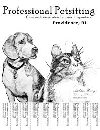 counts web design portfolio petsitting flyer