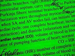 why become a nurse essay sludgeport web fc com why become a nurse essay