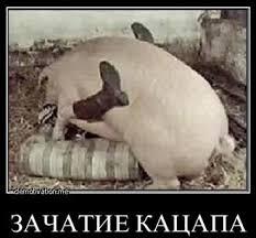 Россия не может ветировать присоединение Украины к Альянсу, - Генсек НАТО - Цензор.НЕТ 5973