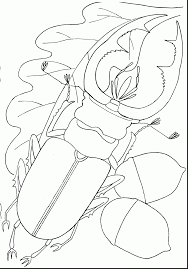 Small Picture Fantastic ant coloring page with insect coloring pages great