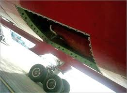 Image result for Air India 787 missing panel