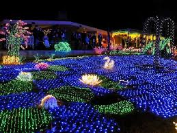 fun outdoor lights photo 2 amazing garden lighting flower