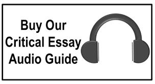 higher english  critical essay format  higher english help criticalessayguide