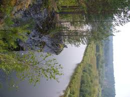 Image result for eco streams