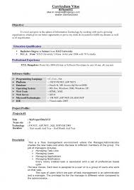 Experience Examples For Resumes  resume examples  resume template