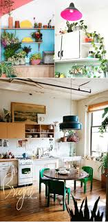 room plants x: dine x design plants on kitchen shelves
