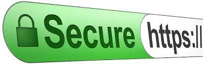 Image result for secure website logo