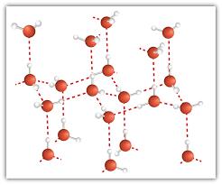 molecule essay water molecule essay