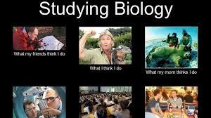biology m | Tumblr