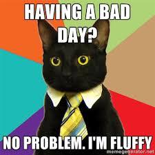 Having a bad day? No problem. I'm fluffy - Business Cat | Meme ... via Relatably.com