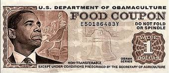 Image result for food stamp