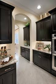 cabinets island countertops kitchen accessories handles flooring backsplash open plan tiles cucine breakfast counter built in appliances design cabinet lighting guide sebring