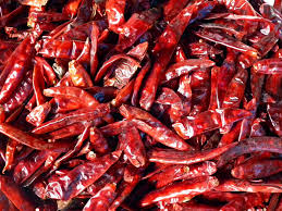 Image result for Dry Red Chilli