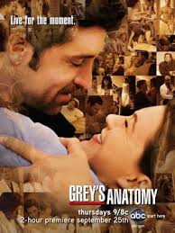 Greys Anatomy Temporada 5