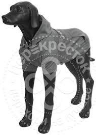 Отзывы о <b>Толстовке для собак Rukka</b> Thrill Technical Sweater ...