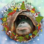 Прикольные Украина с новым годом новогоднее поздравление студии квартал 95