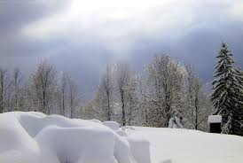 Image result for snowfall images