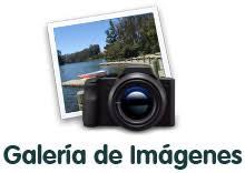 Resultado de imagen para galeria de fotos