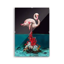 """<b>Постер</b> под стеклом """"Flamingo"""" 70 x 50 см"""