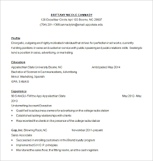 customer service resume template –   free samples  examples    sales customer service resume free download