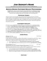 professional summary for resume customer service sample example of professional summary for resume