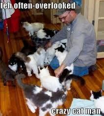 The Crazy Cat Man pics on Pinterest | Crazy Cats, Funny Cat Photos ... via Relatably.com