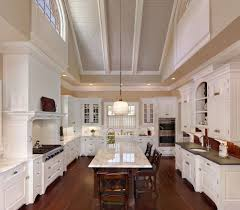hood cover kitchen traditional wolfe