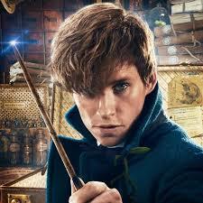 <b>Ньют Саламандер</b> | Волшебный мир Гарри Поттера в 2019 г ...