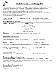sample resume for college counselor resume builder sample resume for college counselor substance abuse counselor resume sample related post of sample resume professional