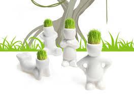 1 piece creative gift plant hair man plant bonsai grass doll office mini plant fantastic home beautifying office bonsai grass pots planters mini