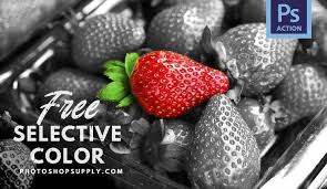<b>Selective Color</b> Photoshop Action   FREE ⚡️ Download ...