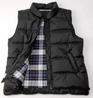 <b>DOWN VEST</b> | meaning in the Cambridge English Dictionary
