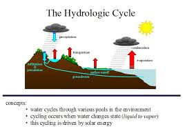 mod  hydrologic cycle jpgdiagram of the hydrologic cycle detailed  printable diagram