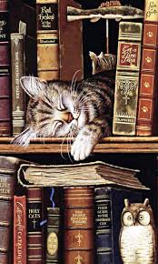 Sleeping cat in books - pretty sure this is by Charles Wysocki ...
