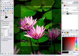 tools to boost creativity in online assignments faculty gimp sshot program