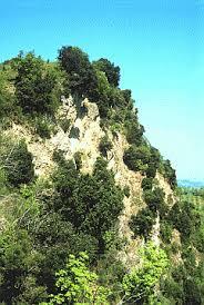 IT4090002 - SIC - Torriana, Montebello, Fiume Marecchia — Parchi ...