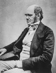 Charles Darwin - Wikipedia