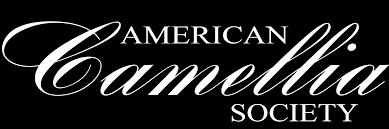 <b>White Empress</b> | American Camellia Society