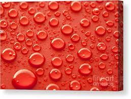 <b>Water Drop Canvas</b> Prints | Fine <b>Art</b> America
