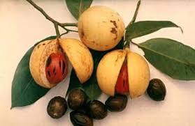 Buah-buahan Nadir