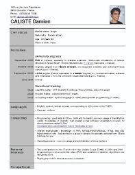 free resume templates australia  seangarrette cocaliste damien caliste damien free resume format download professional resume samples free download sample resume template