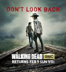 the walking dead poster capa