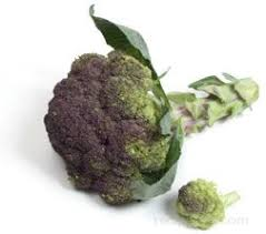 <b>Purple Broccoli</b> - Definition and Cooking Information - RecipeTips.com