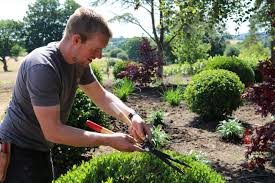 jobs we currently have a vacancy for a nursery worker to join the team here at architectural plants in pulborough you ll be joining a great team of